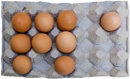 Fresh brown eggs in carton Royalty Free Stock Images