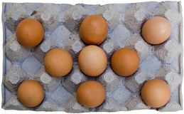 Fresh brown eggs in carton Royalty Free Stock Photos