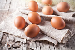 Fresh brown eggs Stock Image