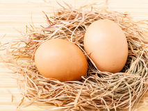 Fresh of brown eggs Royalty Free Stock Image