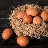 Fresh brown eggs on dark background in the nest. Fresh brown eggs on rustic, wooden, black, dark background in the nest royalty free stock photo