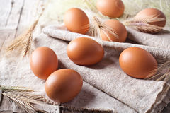 Fresh brown eggs and wheat ears Stock Images
