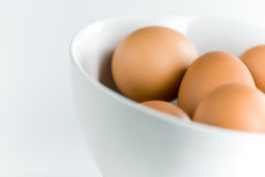 Fresh Brown Eggs in White Bowl on White. Grouping of brown eggs against white setting Royalty Free Stock Images
