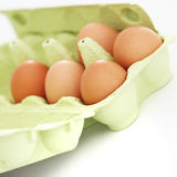 Fresh eggs in a cardboard carton Stock Photography