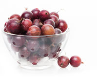 Fresh brown gooseberry in bowl Royalty Free Stock Images