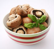 Fresh brown mushrooms. Some fresh brown mushrooms in a bowl royalty free stock photos