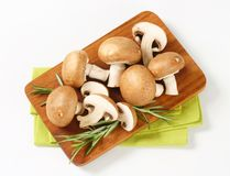 Fresh brown mushrooms Stock Photo