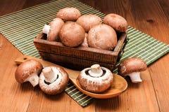 Fresh brown mushrooms Stock Photos