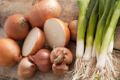 Fresh brown onions with scallions Royalty Free Stock Photography
