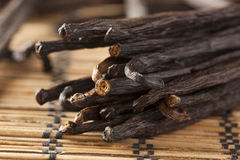 Fresh Brown Organic Vanilla Bean Stock Image