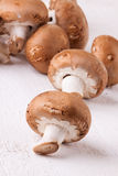 Fresh brown portobello or agaricus mushrooms Royalty Free Stock Photography