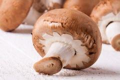 Fresh brown portobello or agaricus mushrooms Stock Image