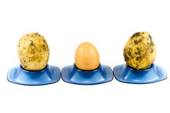 Fresh Brown Potatoes and Egg in Egg Cup Stock Images