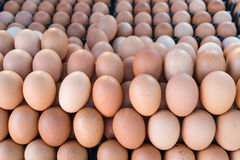 Fresh brown raw eggs in  the market Stock Photo