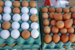 Fresh Brown and White Eggs Royalty Free Stock Photography