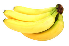 Fresh brunch of banana Royalty Free Stock Image