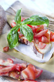 Fresh bruschetta with tomato and basil Stock Photography