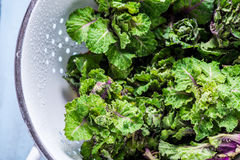 Fresh brussel and kale sprouts flower Stock Photos