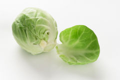 Fresh brussel sprout Royalty Free Stock Photo