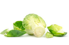 Fresh brussel sprouts Royalty Free Stock Photos
