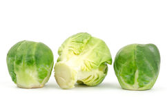 Fresh brussels sprout Stock Photography