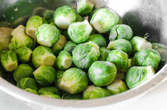 Fresh brussels sprout Royalty Free Stock Photos