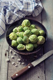 Fresh brussels sprout Stock Photos