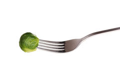 Fresh brussels sprout on fork Royalty Free Stock Photos