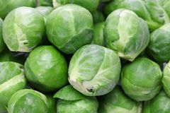 Fresh brussels sprouts. Close up Royalty Free Stock Images
