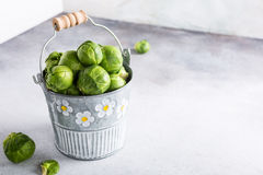 Fresh Brussels sprouts in metal bucket Royalty Free Stock Photo