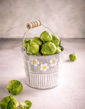 Fresh Brussels sprouts in metal bucket Stock Photography