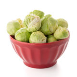Fresh brussels sprouts. On red ceramic bowl isolated on white background Royalty Free Stock Photos