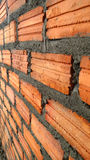 Fresh build the brick wall Stock Images