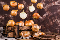 Fresh  bulb onions Stock Images