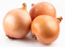 Fresh bulbs of onion Royalty Free Stock Image