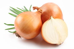 Fresh bulbs of onion Stock Photography
