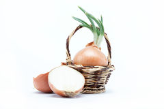 Fresh bulbs of onion in basket on a white. Background Royalty Free Stock Photography