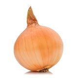 Fresh  bulbs  of  onion isolated on white background Stock Images