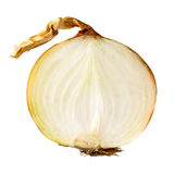 Fresh bulbs of onion slice Stock Images