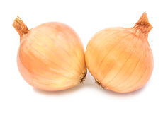 Fresh  bulbs  of  onion on a white background Stock Photography