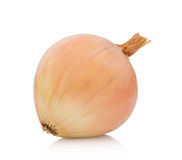 Fresh  bulbs  of  onion on a white background Royalty Free Stock Image