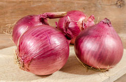 Fresh bulbs of red onions Stock Images