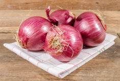 Fresh bulbs of red onions Royalty Free Stock Image