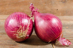 Fresh bulbs of red onions Royalty Free Stock Photo
