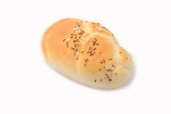 Fresh bun Stock Photography