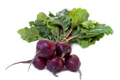 Fresh bunch of beetroot Royalty Free Stock Image