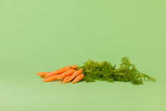 Fresh bunch carrots Royalty Free Stock Images