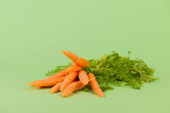 Fresh bunch carrots Royalty Free Stock Photography