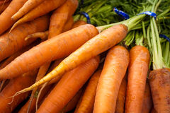 Fresh bunch of carrots for sale at a market Royalty Free Stock Photos