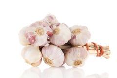 Fresh bunch garlic Stock Photography